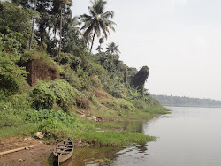View from Periyar River