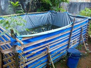 Langkah Pembuatan kolam budidaya lele media terpal