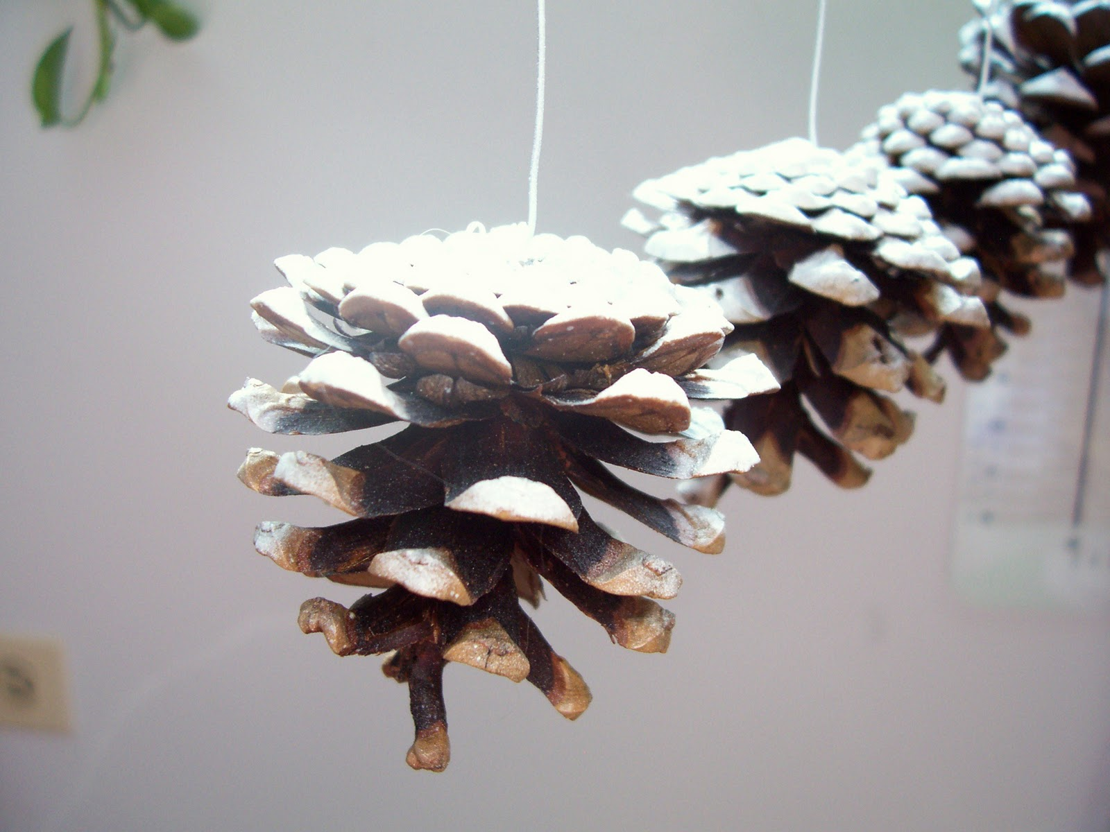 Craftopotamus snowy pine cone christmas ornaments Homemade christmas decorations using pine cones