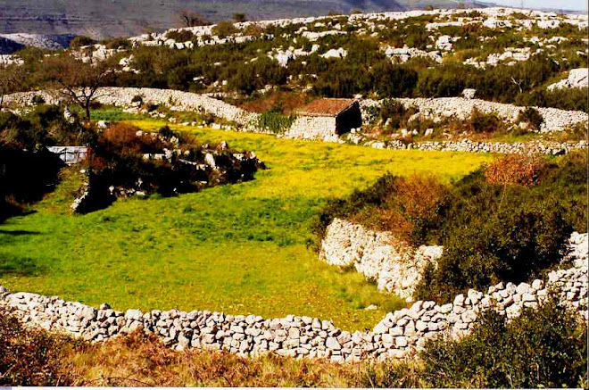 Muros pedra