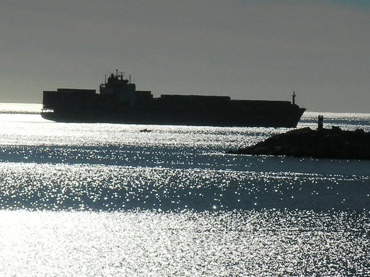 navio de contentores no Porto de Sines