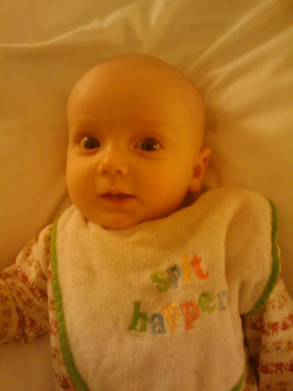 The Pregnant Pause: I love adorable, bald, round-headed babies