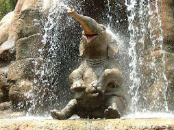 Um elefante livre.......