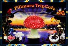 Portfolio / FILLMORE TRIP CAFE