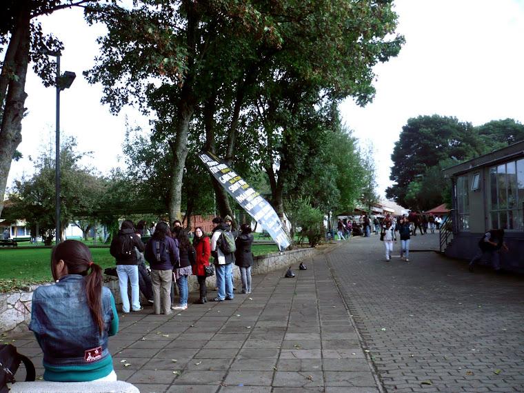EDUCACIÓN 14. LOS CABROS DE LA UFRO