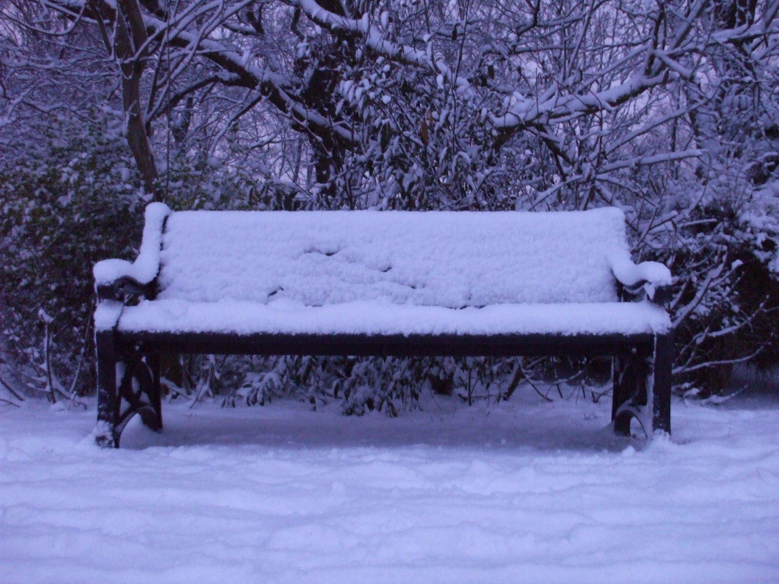 [snow4]