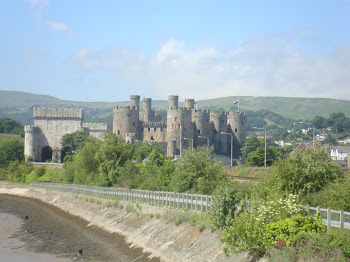 Conwy Castle from RSPB