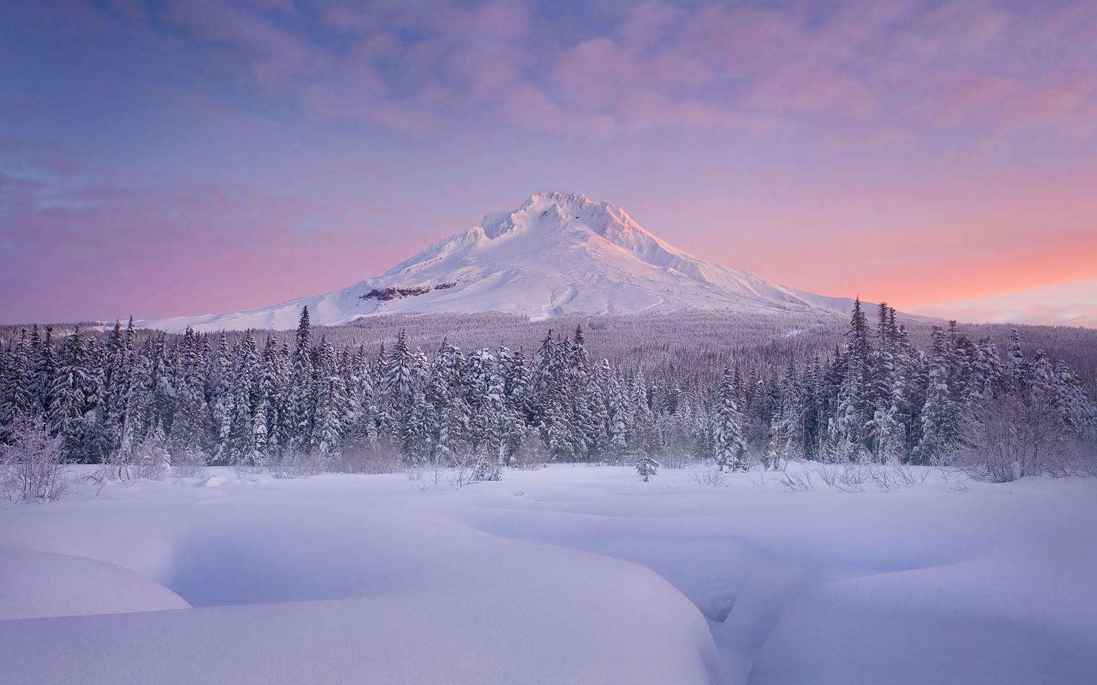 http://3.bp.blogspot.com/_W1ueYt1O3xs/TQqEBUX-fEI/AAAAAAAAXbw/60PGkZldNbU/d/Winter+Landscape+Wallpapers+%252811%2529.jpg