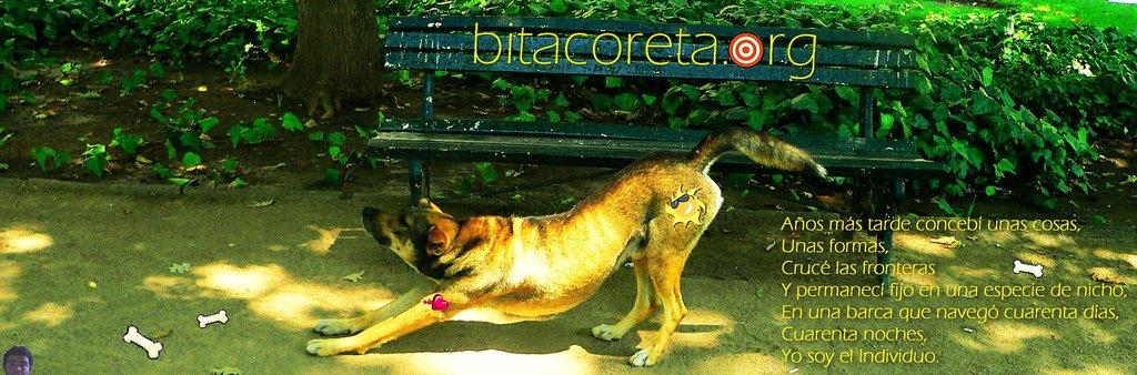 bitacoreta.org
