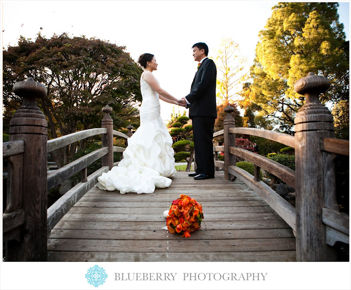south bay wedding photographer