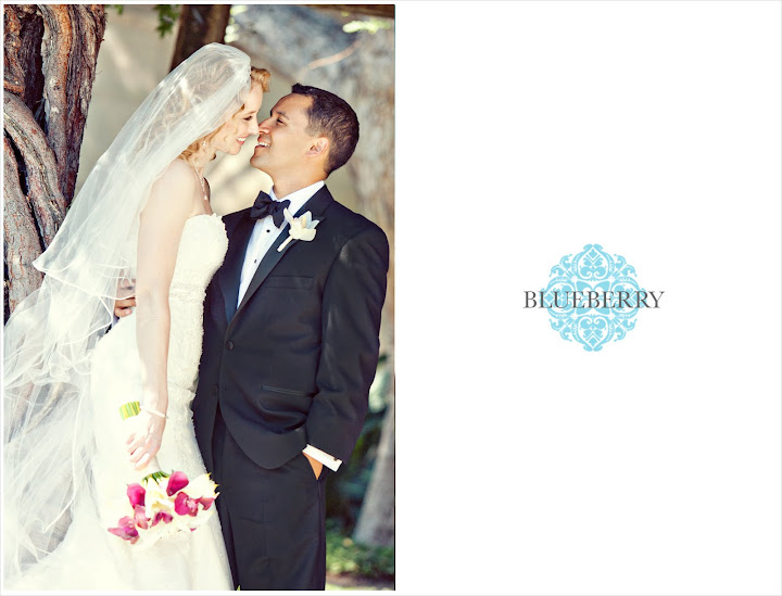 santa clara mission church wedding photographer