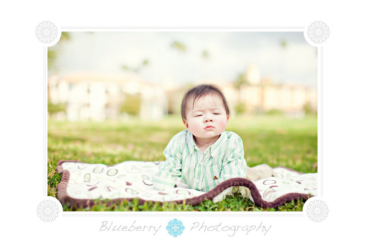 baby photography bay area san francisco