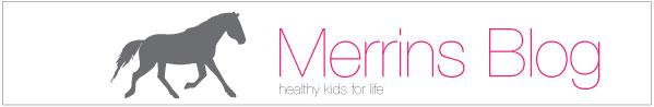 merrins blog