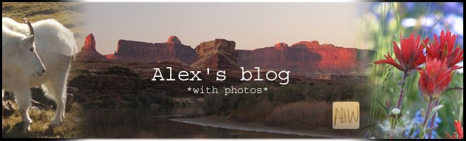 Alex's blog *with photos*