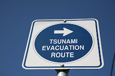 Tsunami Zone