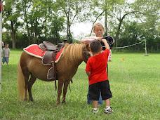 Horse Club AKA Wranglers