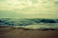 Ocean Dreams Studio