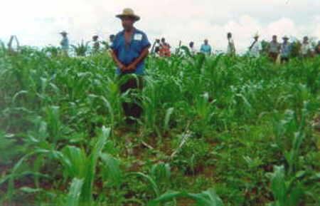 Se inicia proyecto para desarrollo rural en el oriente cubano