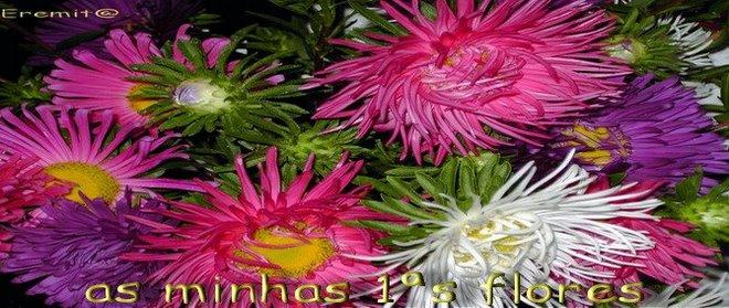 flores que semeei