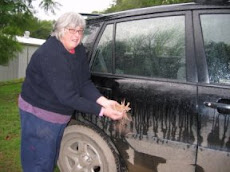 Happy Sue Edge Washing Her Car With Mud