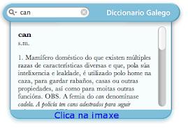 DICIONARIO GALEGO