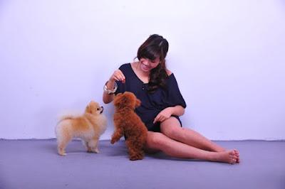 phuong vy vietnamese idol