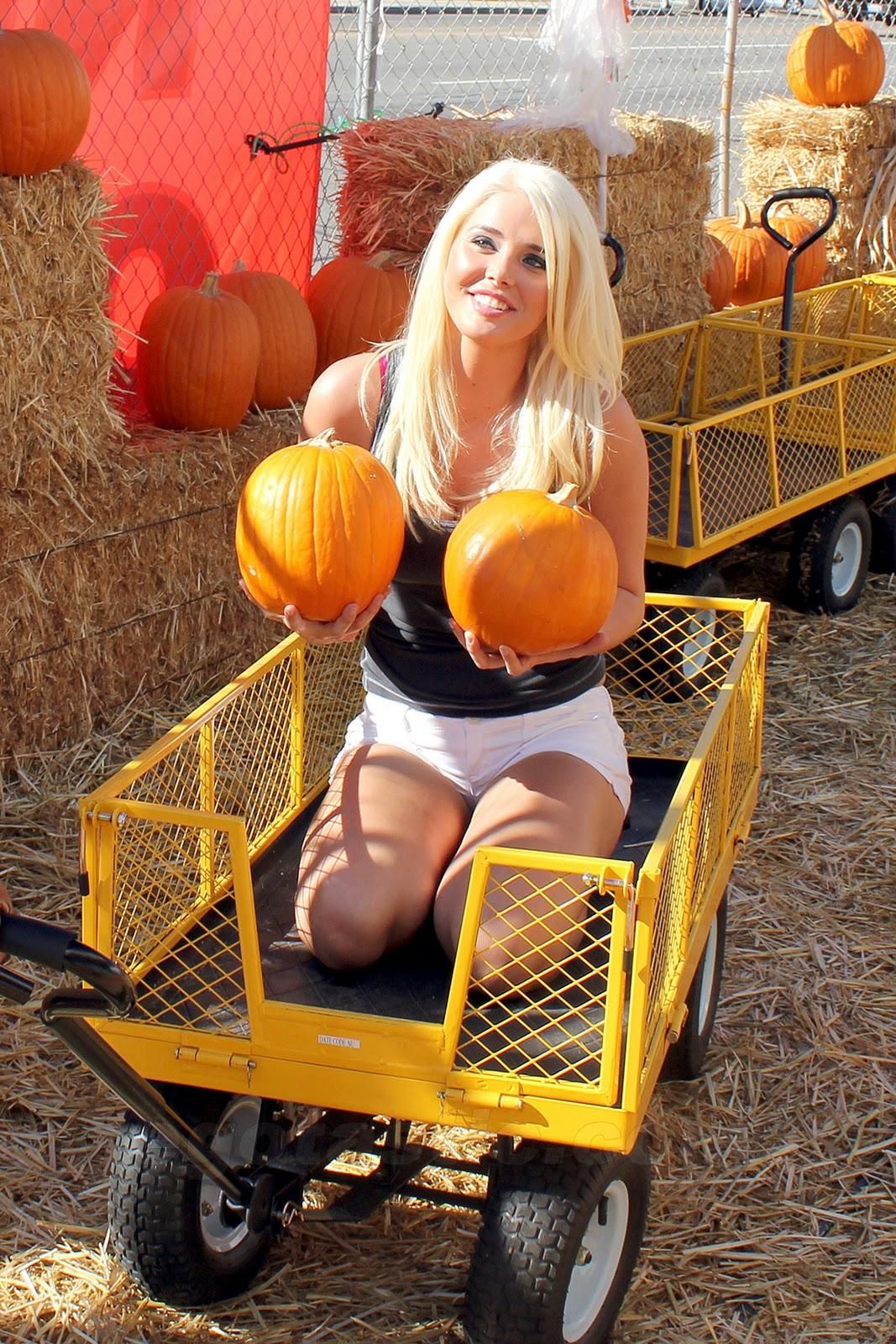 http://3.bp.blogspot.com/_WDCWEjl45FQ/TTXudnWyd0I/AAAAAAAACsw/iCFHDD4eSiQ/s1600/karissa-shannon-pumpkin-patch-01.jpg