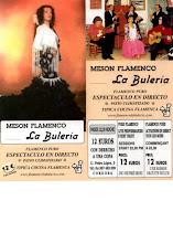 Meson Flamenco – La Buléria