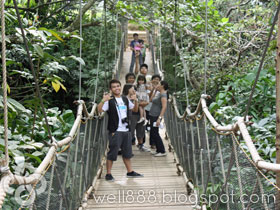 hanging bridge at Caleruega