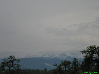 Retezat-Godeanu Mountains seen from Densus