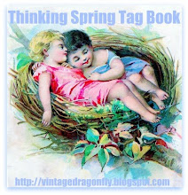 Vintage Dragonfly's First Blog Swap
