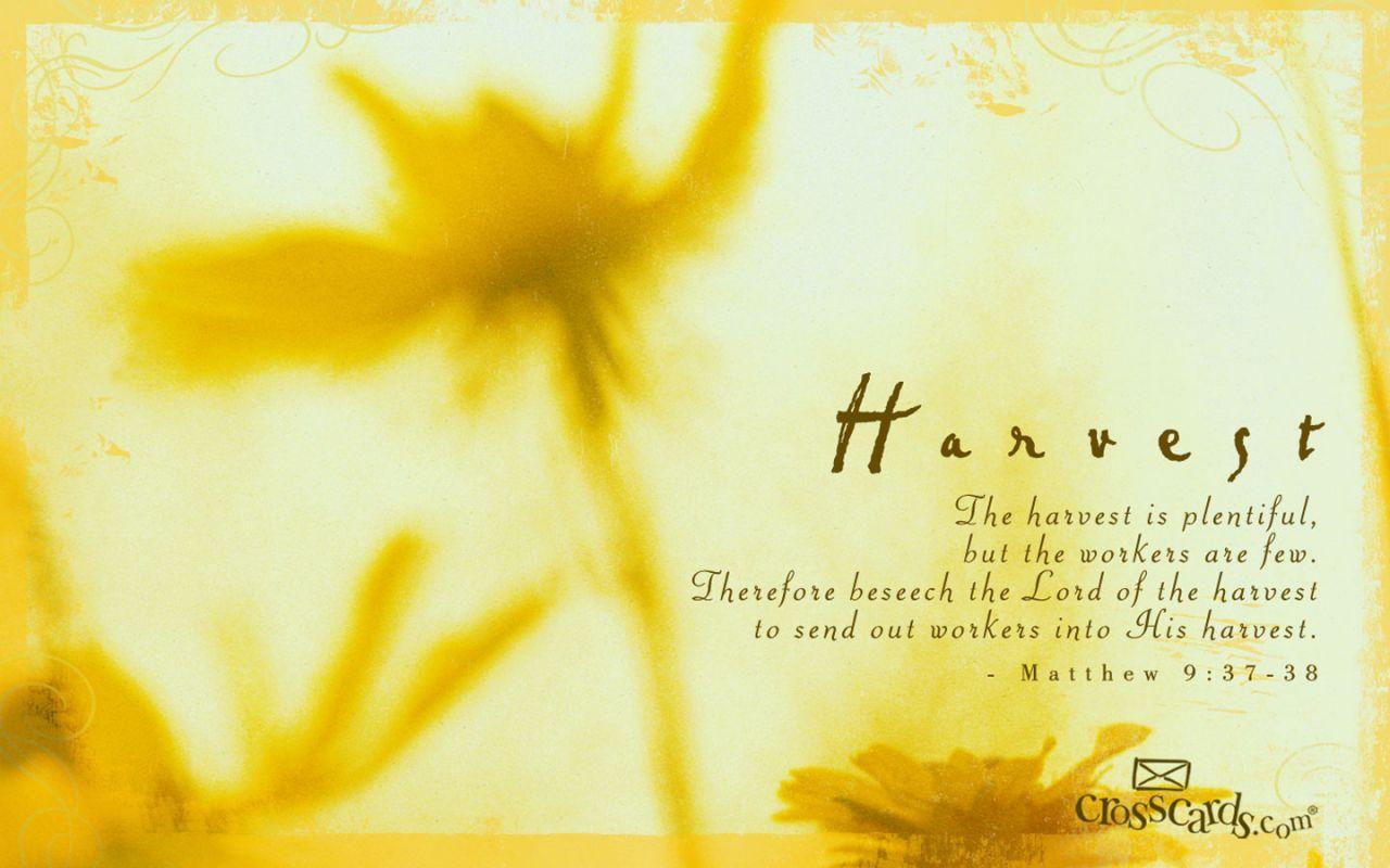 Ourlordswill Matthew 9 37 38