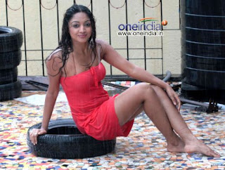 south indian actress bathing pictures