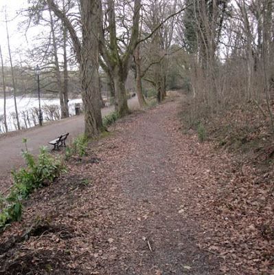 Llandrindod lakeside: two paths are better than one