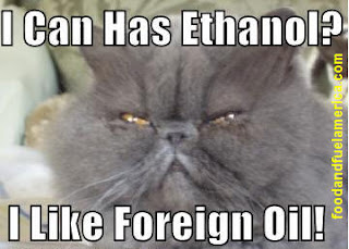 LOLCAT LOL CAT Grumpy Cat Doesn't Want Alternative Energy
