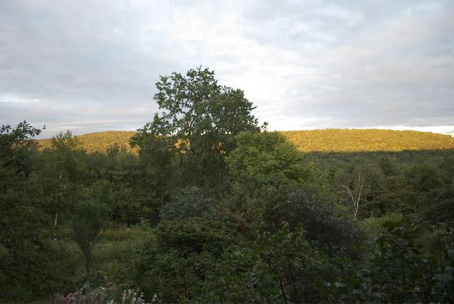 Flower Hill Farm: Seasonal Musings Part Five View from ...