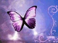 Premio violeta