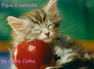 Blog da Cidha Cunha