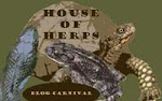 House of Herps
