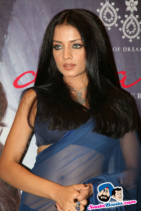 Celina Jaitley in Blue Saree - Latest Hot Pics