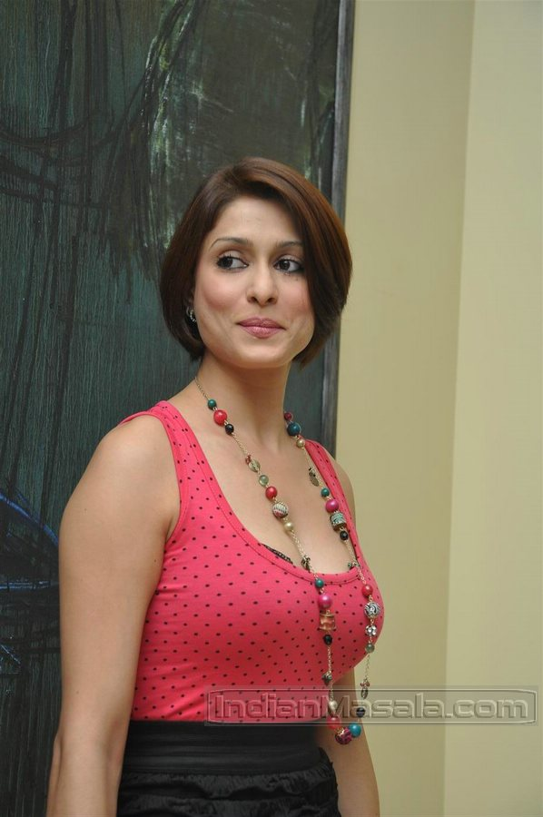 , Tv Babe Shilpa Saklani Latest hot Pics