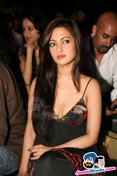 Sexy Riya Sen, Kim sharma, Sophie Celebrity Guests at HDIL