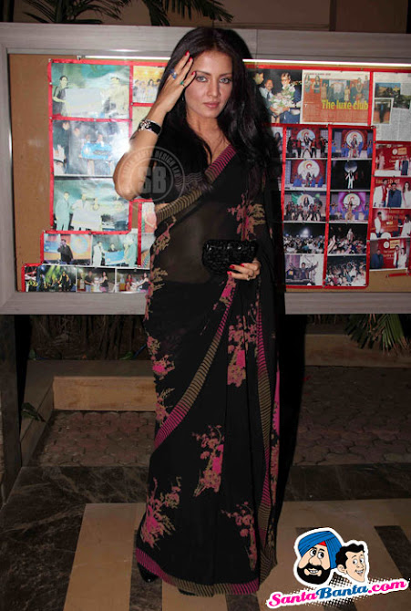 Sexy Celina in Balck Saree at Country Club New Year Bash Press Meet - Famous Celeb Press Meeting Gallery - Famous Celebrity Picture