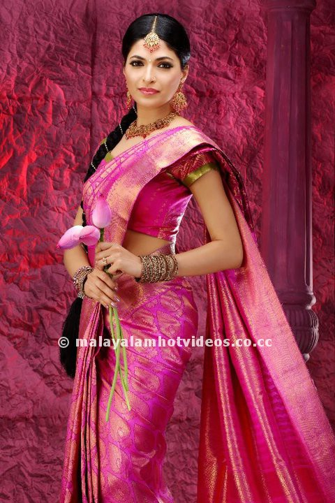 Parvathy omanakuttan Hot Saree Wallpapers