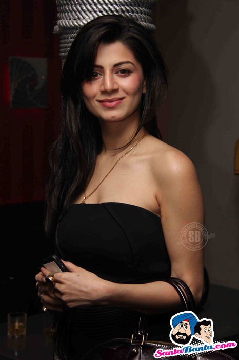 Hot Babes at Kabhi Dil Chahe Album Launch