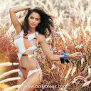 Kingfisher Calendar 2011 Wallpapers Free Download