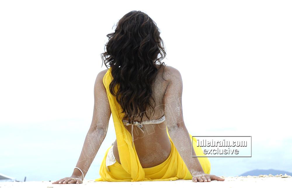 , ILeana Hottest Backless Saree Wallpapers on Sandy Beach