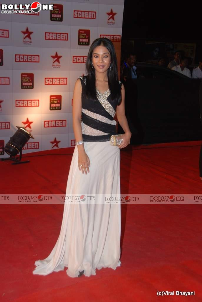 Amrita Rao at Star Screen Awards 2011