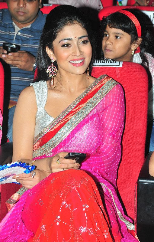  Shriya Saran Looking HOT in Pink Saree