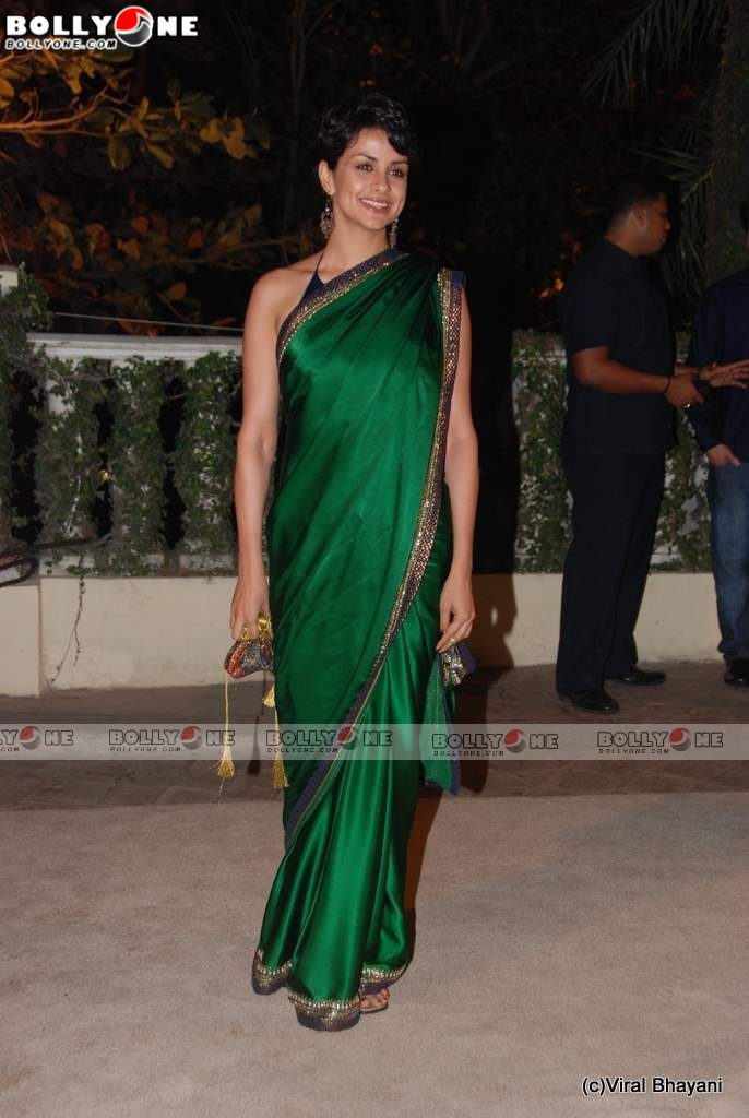 Hot Gul Panag in Green Saree at Imran Khan Wedding Reception